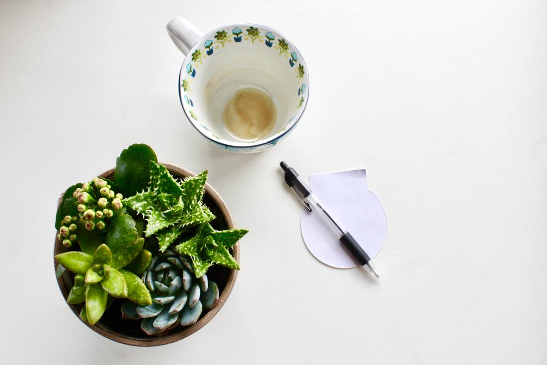 Empty coffee cup, pen, succulent on white table
