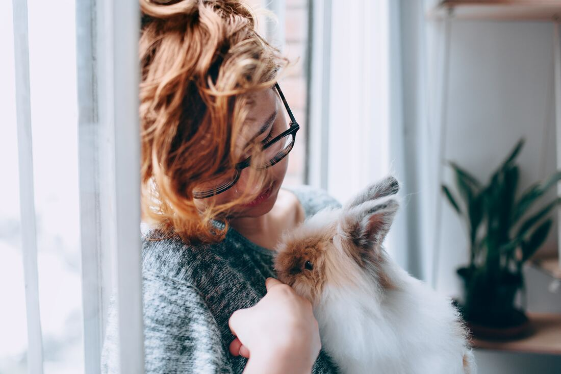 girl in glasses sitting in window petting fluffy rabbit